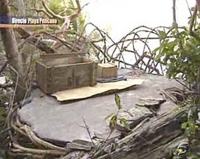 Miriam finaliza su misión y nuevo habitante en 'Playa Pelicano'